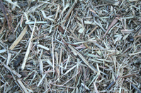 Straws and Hays