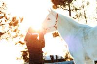 Sunset Kiss White Horse