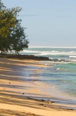 Morning in Hawaii
