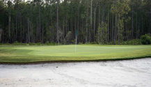 Golf Course Green and Sand Trap