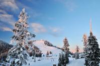 Grouse Mountain at ski season