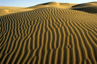 Sand Dunes Patterns