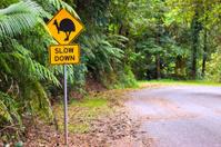 Cassowary road warning sign in Australia