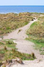 dunes on the dutch coast