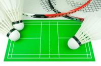 Badminton rackets, shuttlecocks, field drawing