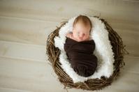 Newborn Baby in a Nest