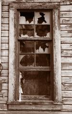 Shattered Wood-Frame Window
