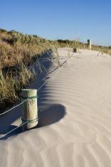 Sand Dune Posts