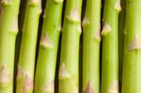 detail of fresh green asparagus