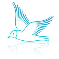 Seagull. Vector illustration.