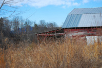 Old Barn and sky