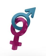 blue and pink symbols of human genre