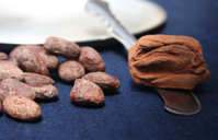 Chocolate truffle and coacoa beans