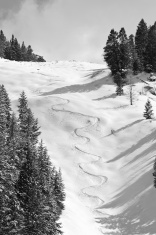 Fresh ski tracks