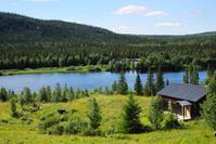 House near lake in the middle of taiga forest.