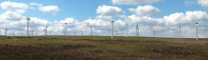 Panorama of Wind Farm in Scotland