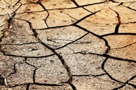 Cracked  desert  soi  clay