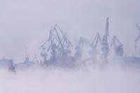 Fog over harbor