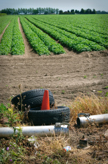 Environmental pollution - waste in field