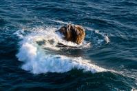 Sea water swirling around the stone.
