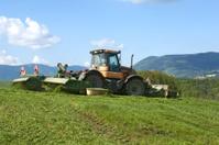 Grass cuting