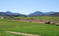 Country side North Carolina