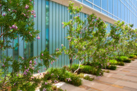 Ultramodern Translucent Glass Facade with Ornamental Garden