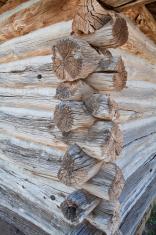 Corner of log cabin