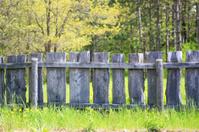 Wooden Plank Farm Fence