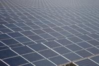 Solar farm panels