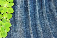 Green leaf on grunge fabric