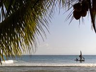 Haiti, Aquin, boat and coconut frond.