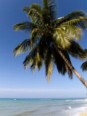 Haiti, Jacmel, coastline, Caribbean Sea.