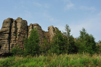 The Stone forest like a wall