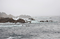 Foggy California Coast - Pacific Ocean