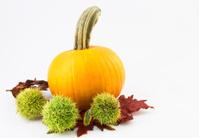 Autumn Chestnuts and Pumpkin