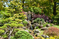 Japanese Garden with waterfall