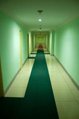 Empty green hotel hallway