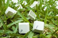 Keys on Grass