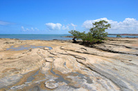 Tropical beach with rocks (Brazil)