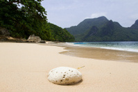 Beach on Philippines