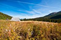 Tatra Mountains Hala Gasienicowa. Poland