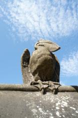 Bird Statue on Cardiff Castle Wall