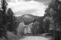 Fall Road to Pikes Peak Black and White