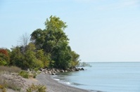 Point Pelee scenic