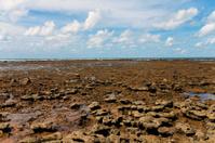Low Water on Brazilian Coast