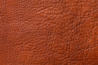 Rustic Leather Background and Texture