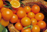 Food fruits orange in the basket
