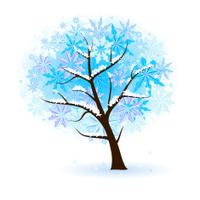 Winter Fruit Tree