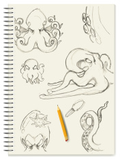 Sketch - Octopus